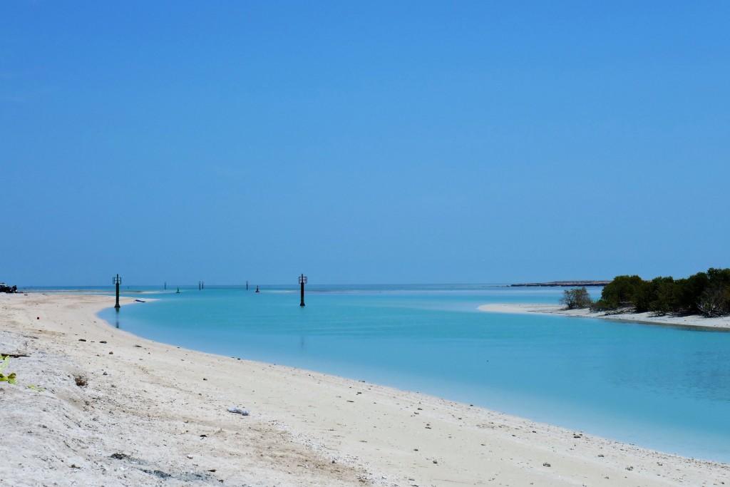 al thakira mangrove doha (2)