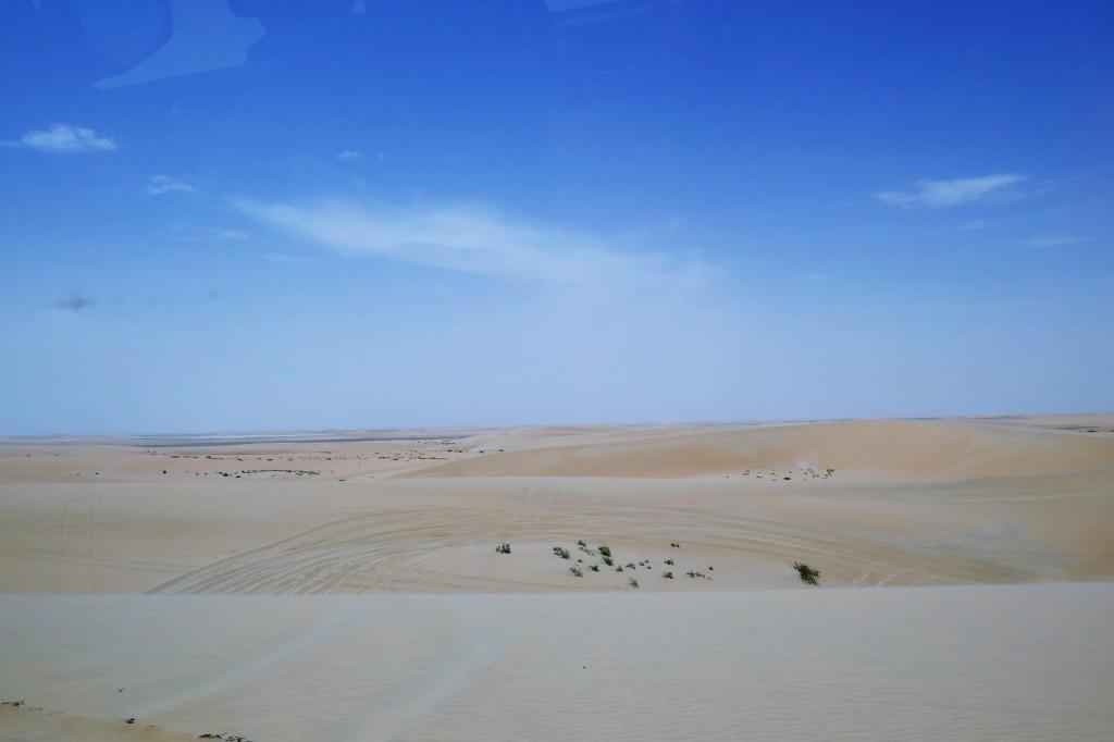 safari 4x4 desert doha (5)