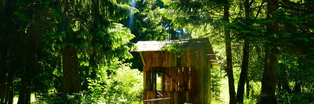 Des Vacances dans le Jura Suisse : 5 expériences incontournables