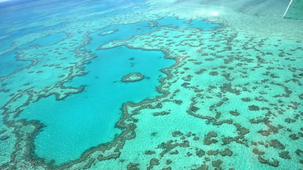 The Heart of The Great Barrier Reef GSL Aviation Scenic Flight