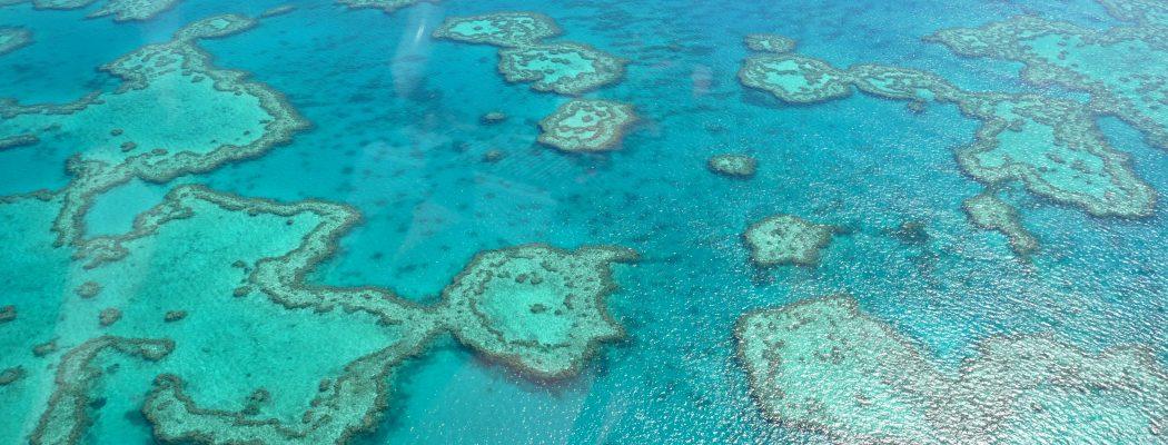 Survoler la Grande Barrière de Corail & les îles des Whitsundays : Un rêve à réaliser. Queensland V.