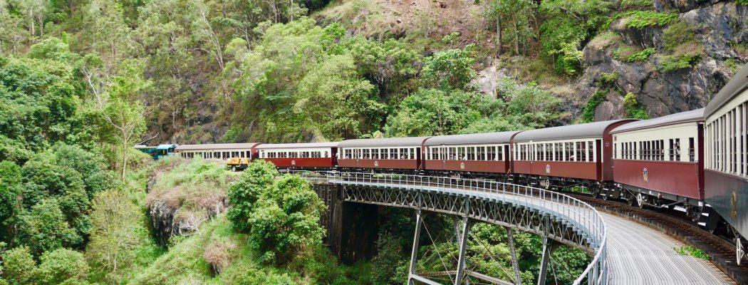 Une semaine à Cairns ? De la Grande Barrière de Corail à la forêt tropicale humide. Queensland IX.