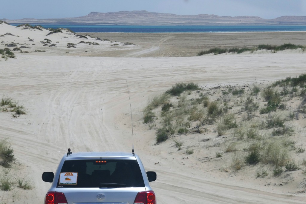 safari 4x4 desert doha (3)